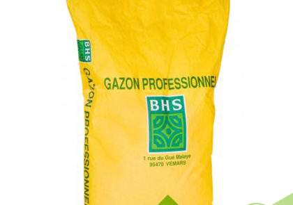 gazon-sac-graine