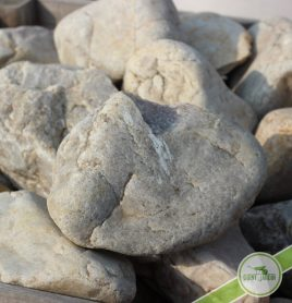 Gros-pierre-evreux