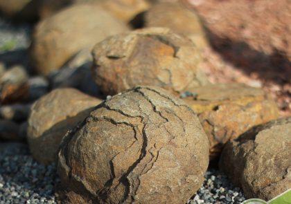 rocher-rouille-jardin